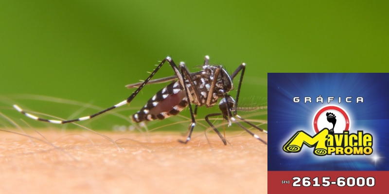 Teste que permite o diagnóstico rápido da dengue   Imã de geladeira e Gráfica Mavicle Promo